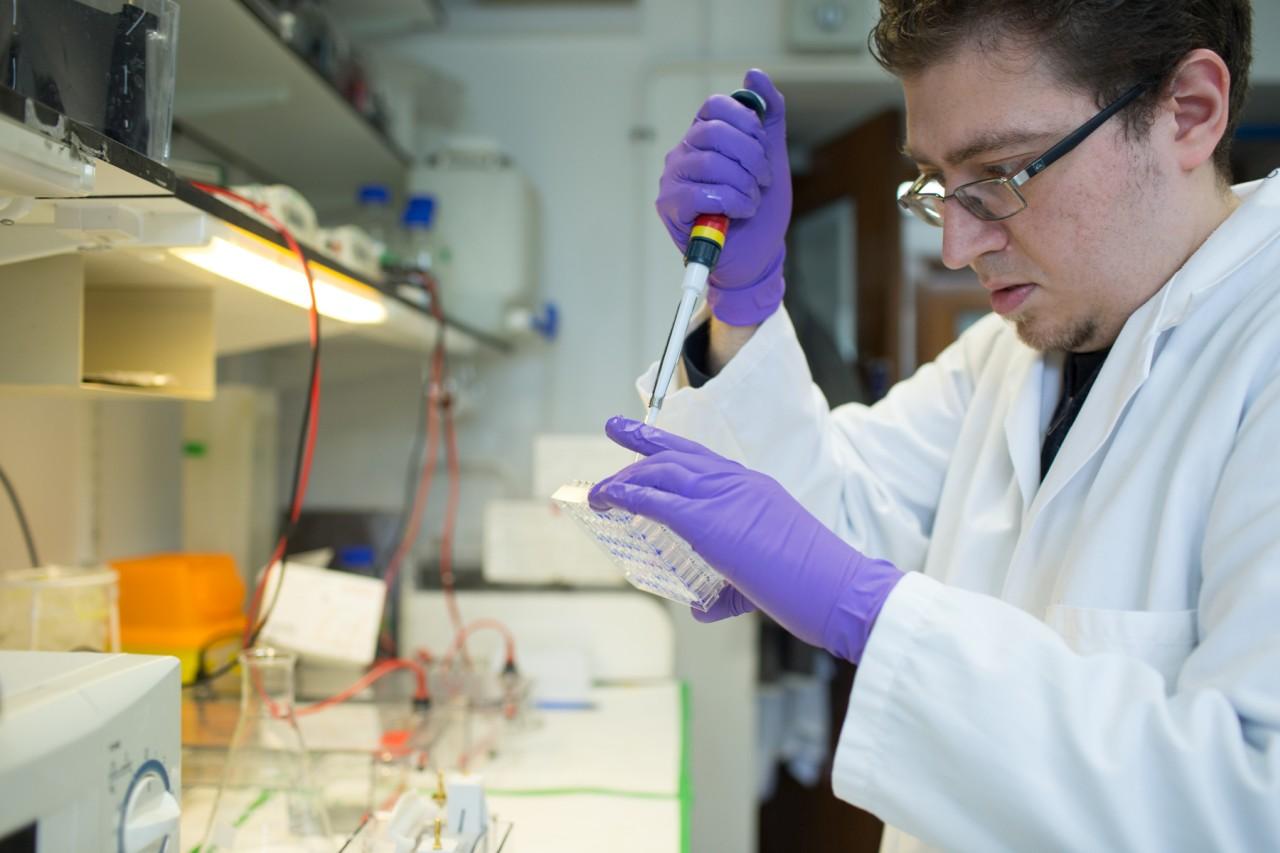 Preimplantation genetic diagnosis: information for patients