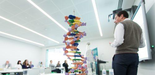 A doctor explains a DNA model